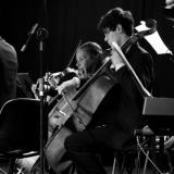 Concerto Oficial   Galeria de Fotos